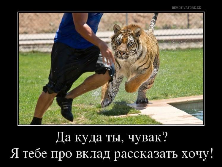 Амурский тигр - вклад в Россельхозбанке