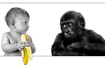 Как накопить миллион к совершеннолетию ребенка