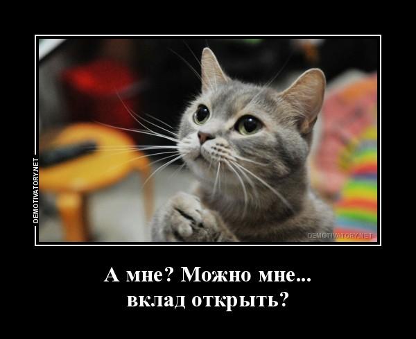 Можно ли открыть вклад коту