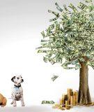 Что такое зеленые облигации и как в них инвестировать в России