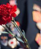 Память и гордость - новый сезонный вклад от Сбербанка с повышенной ставкой