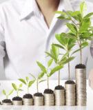 Обзор ETF Vanguard: как инвестировать в фонды Джона Богла