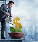Что такое чистая прибыль компании?