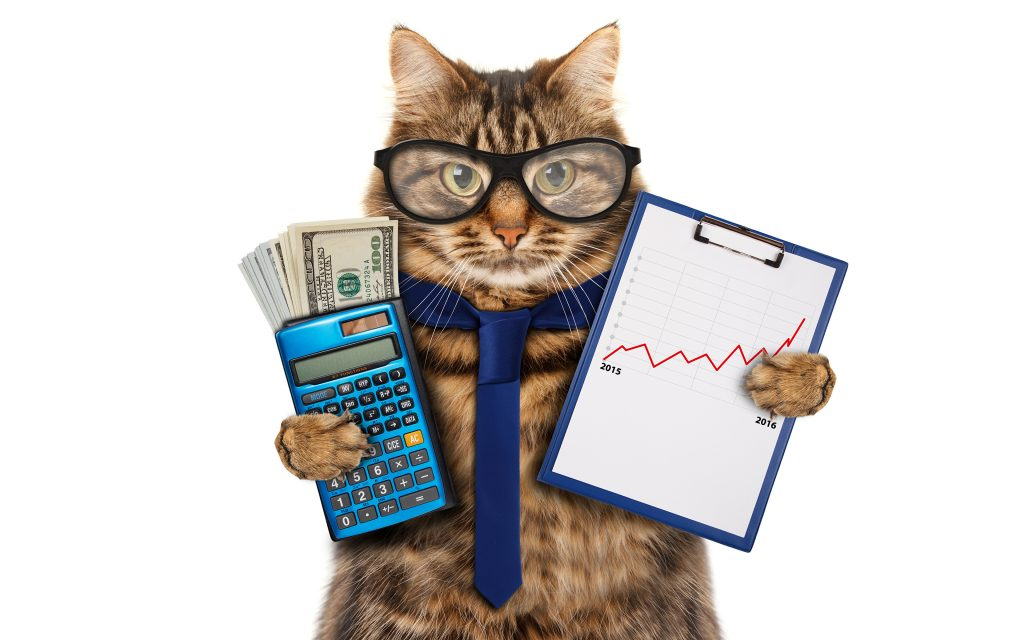 Рейтинг доходности ПИФов: как на самом деле выбирать фонды